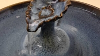 """Blue Leaf Cat Fountain"""