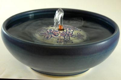 purple phlox cat fountain