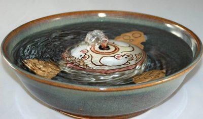water fountain cat