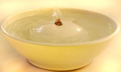 white ceramic cat fountain