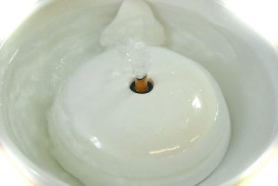 cat water fountain