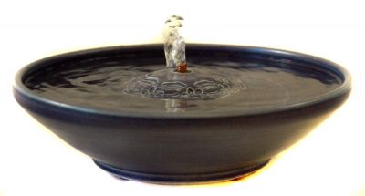cat fountains