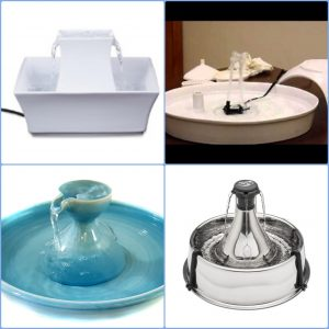 pet fountain reviews