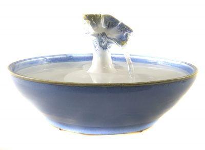 cat drinking fountain